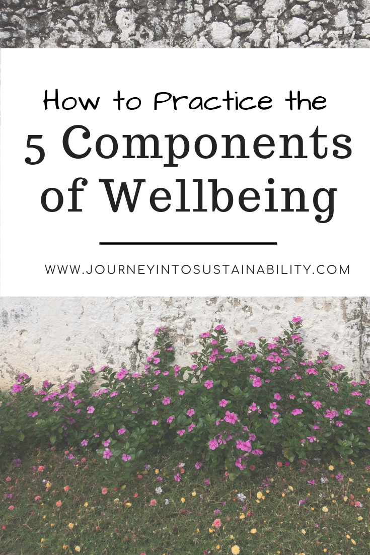 5 components of wellbeing