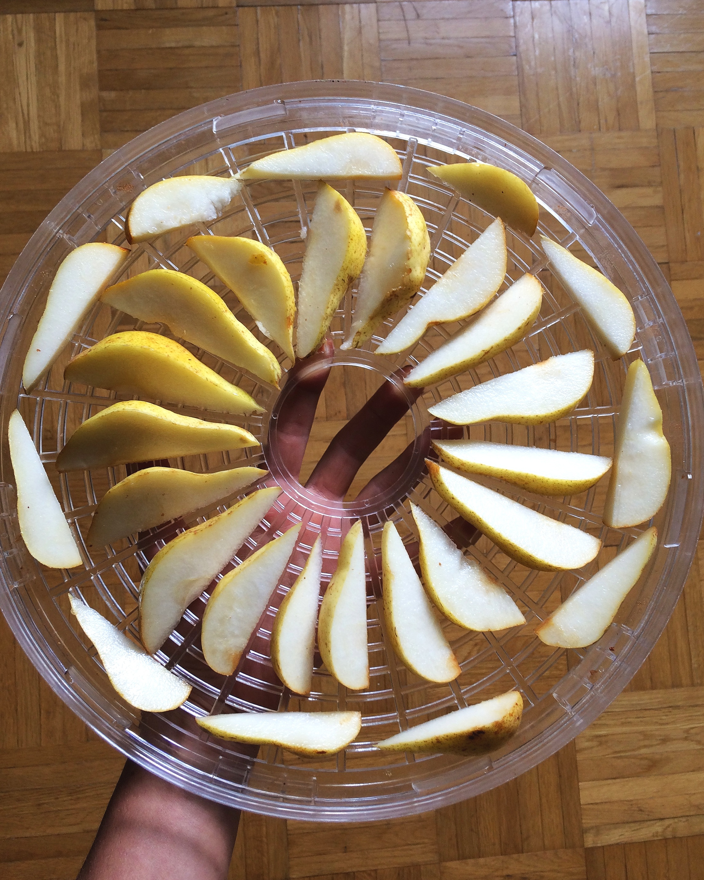 Pears+Before+Dehydrating+-+Preserve+Food