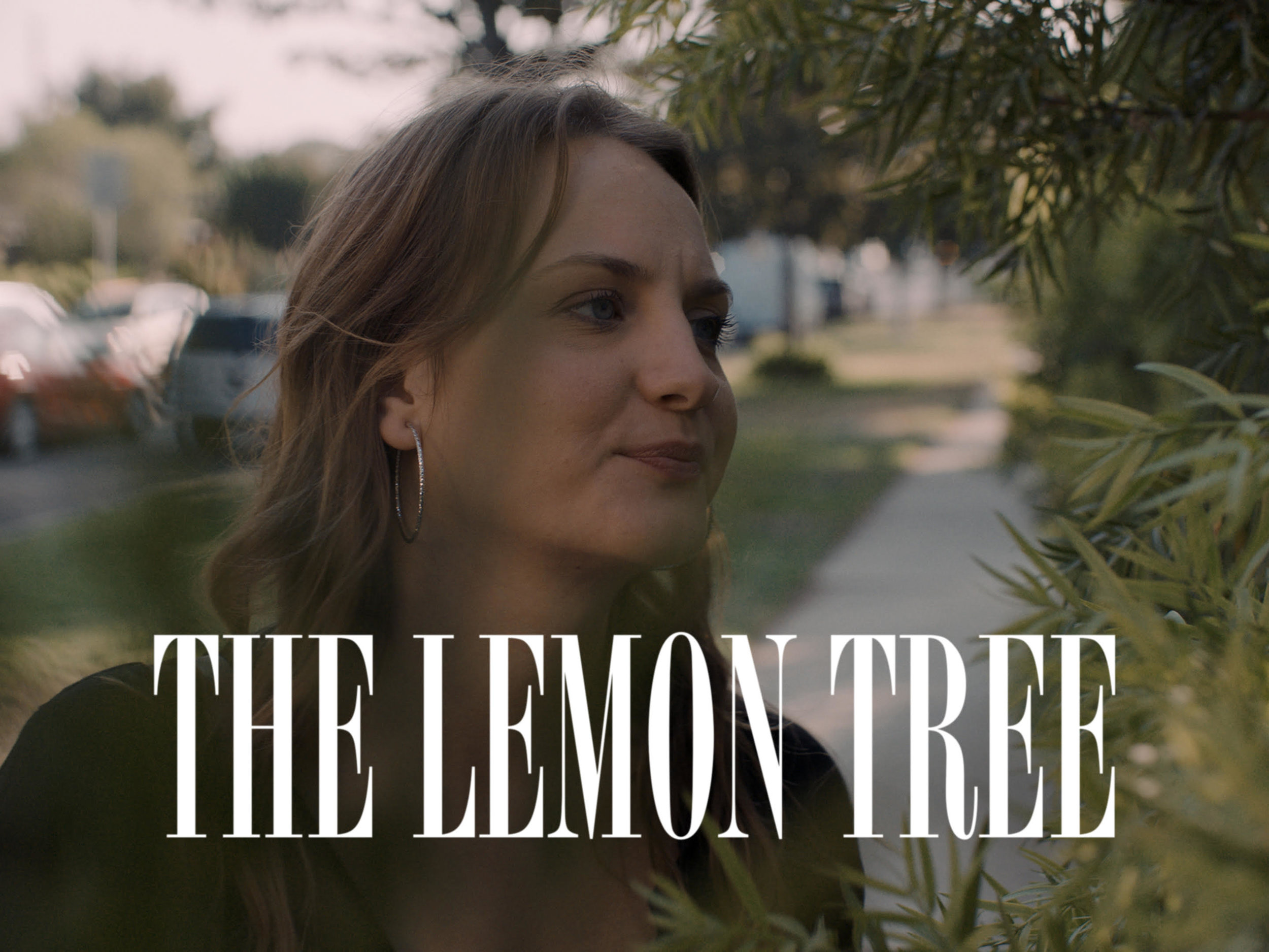 Lemon Tree Still.jpg