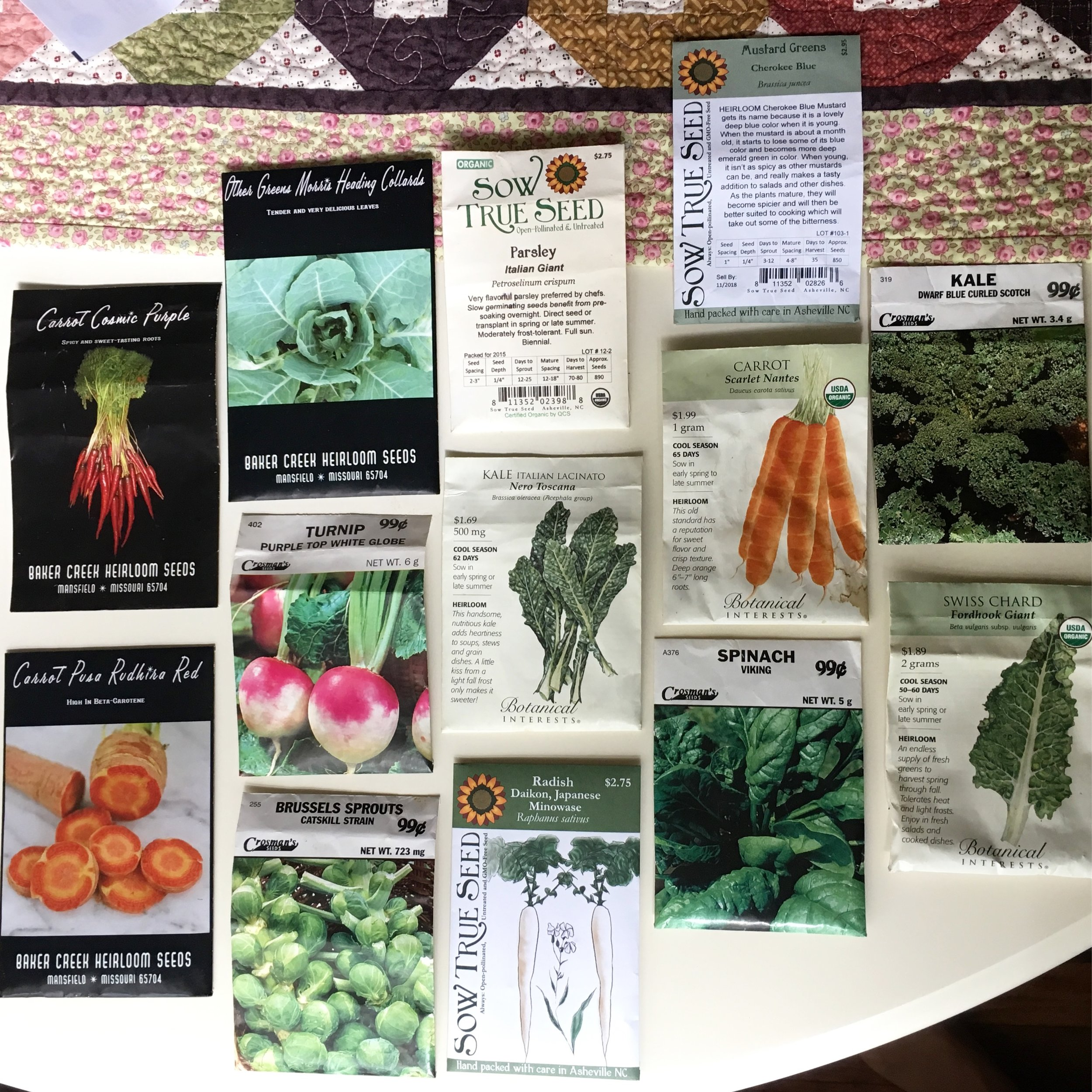 Seeds for our Fall Garden