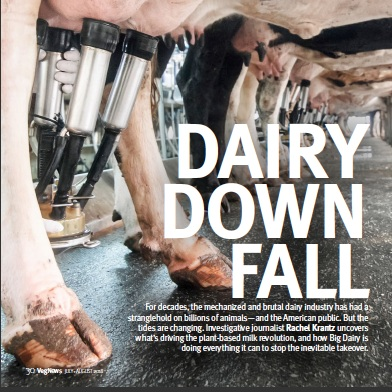 An Investigation Into Dairy's Rapid Decline  - VegNews Magazine