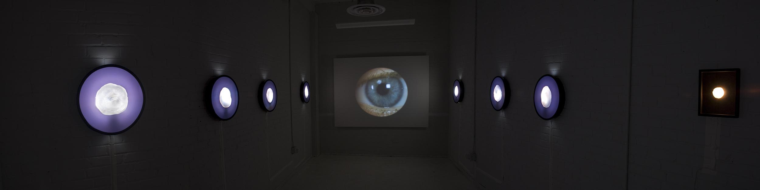 "Samples  installed at Pyramid Atlantic Gallery, Silverspring, Maryland, 2008. 17X17"" Duratrans transparencies on lighboxes, silicone imprint, video loop."
