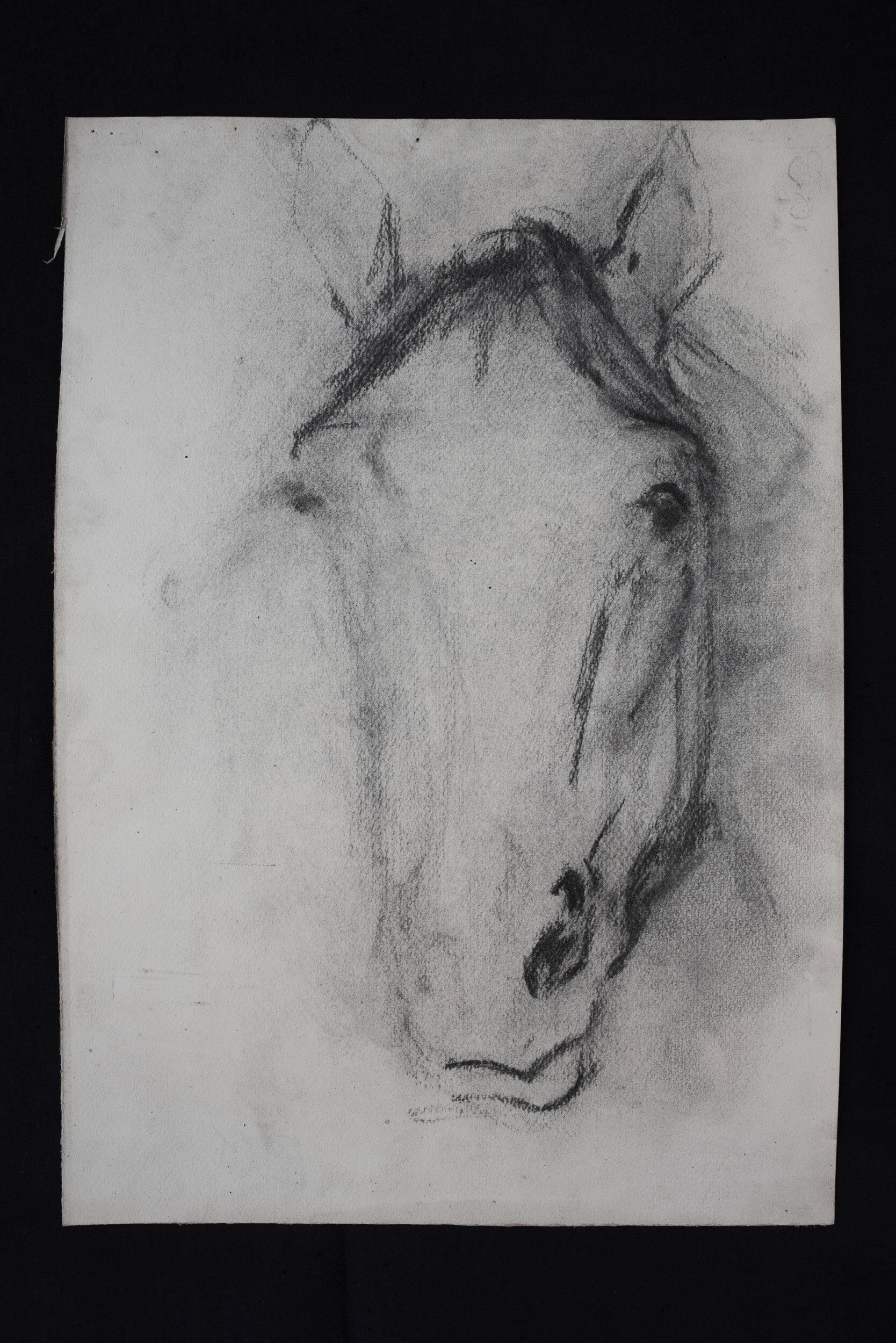 Horse #04