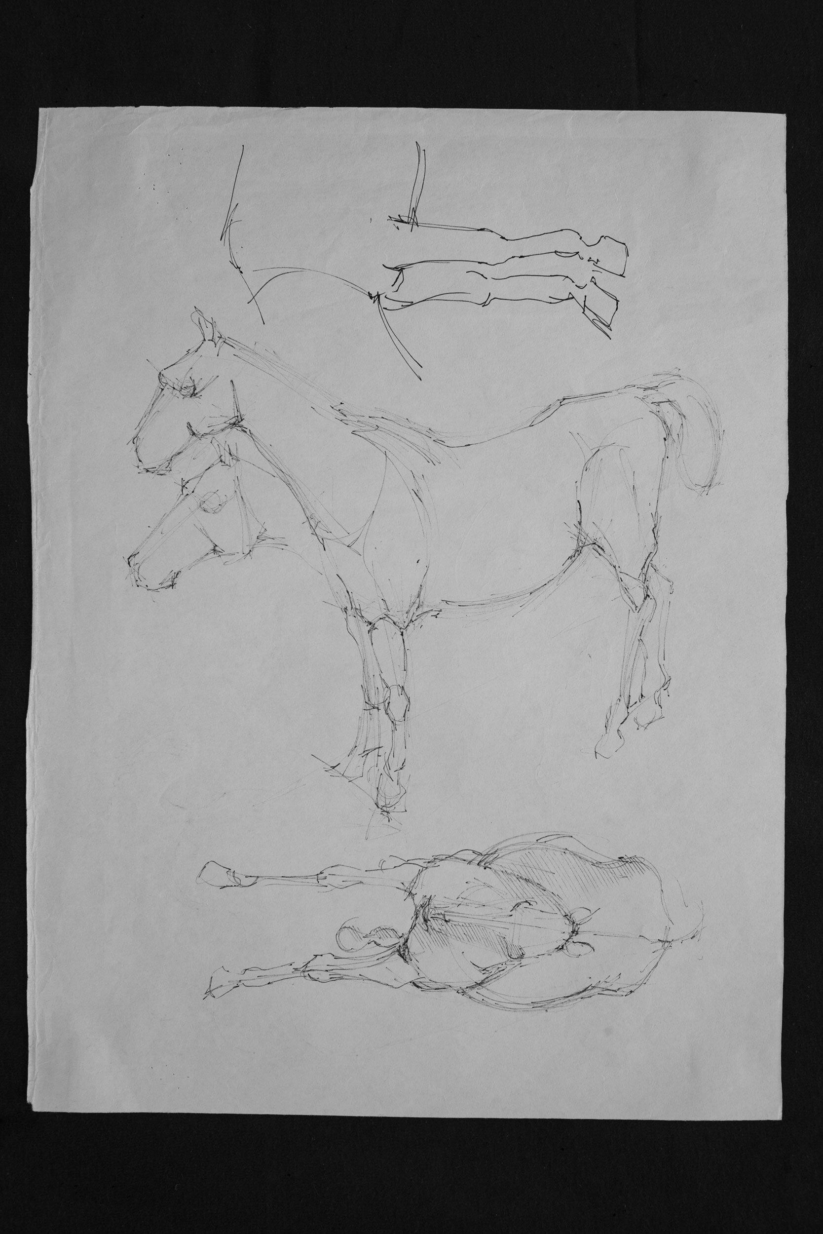 Horse pen schetch 05