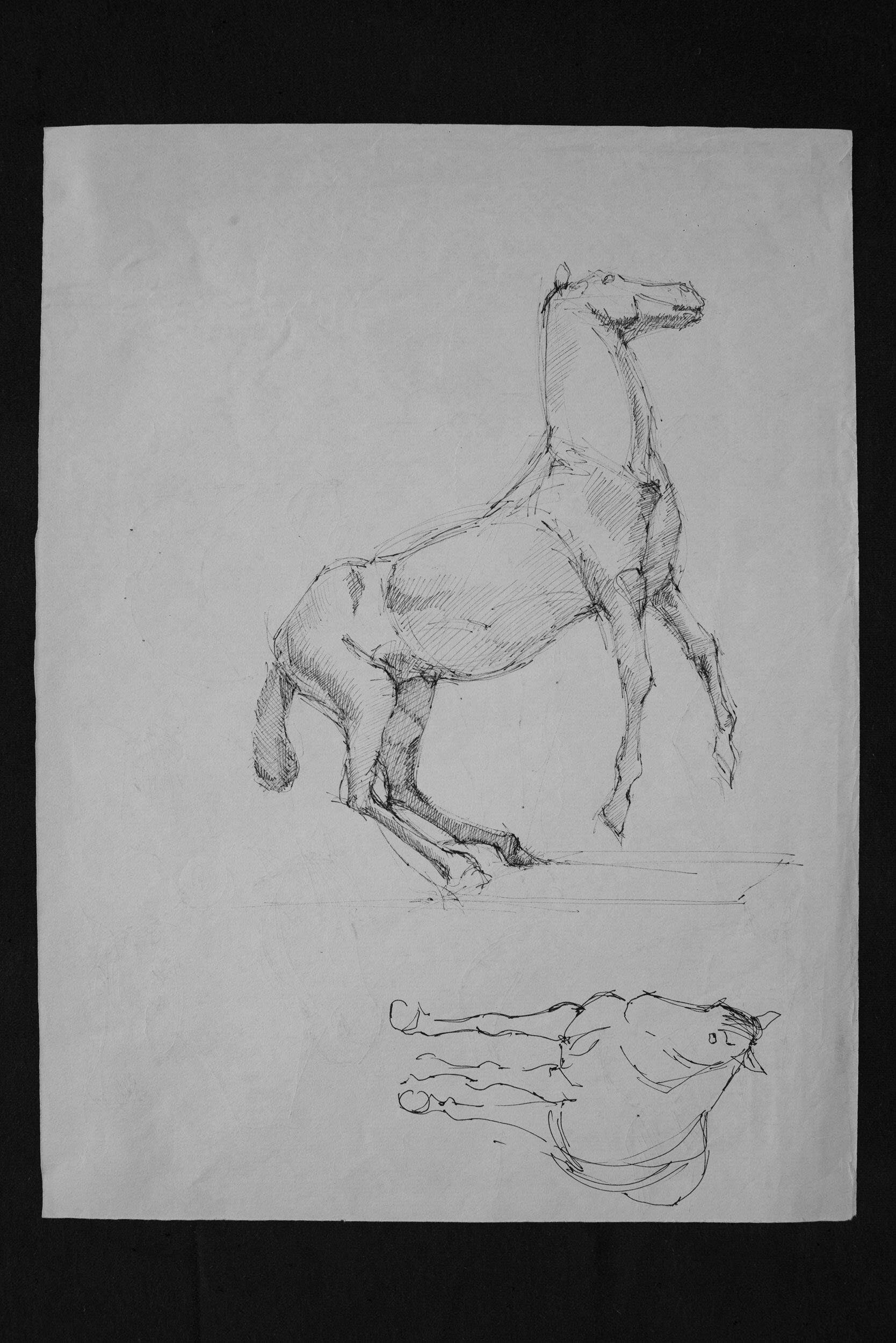 Horse pen schetch 04