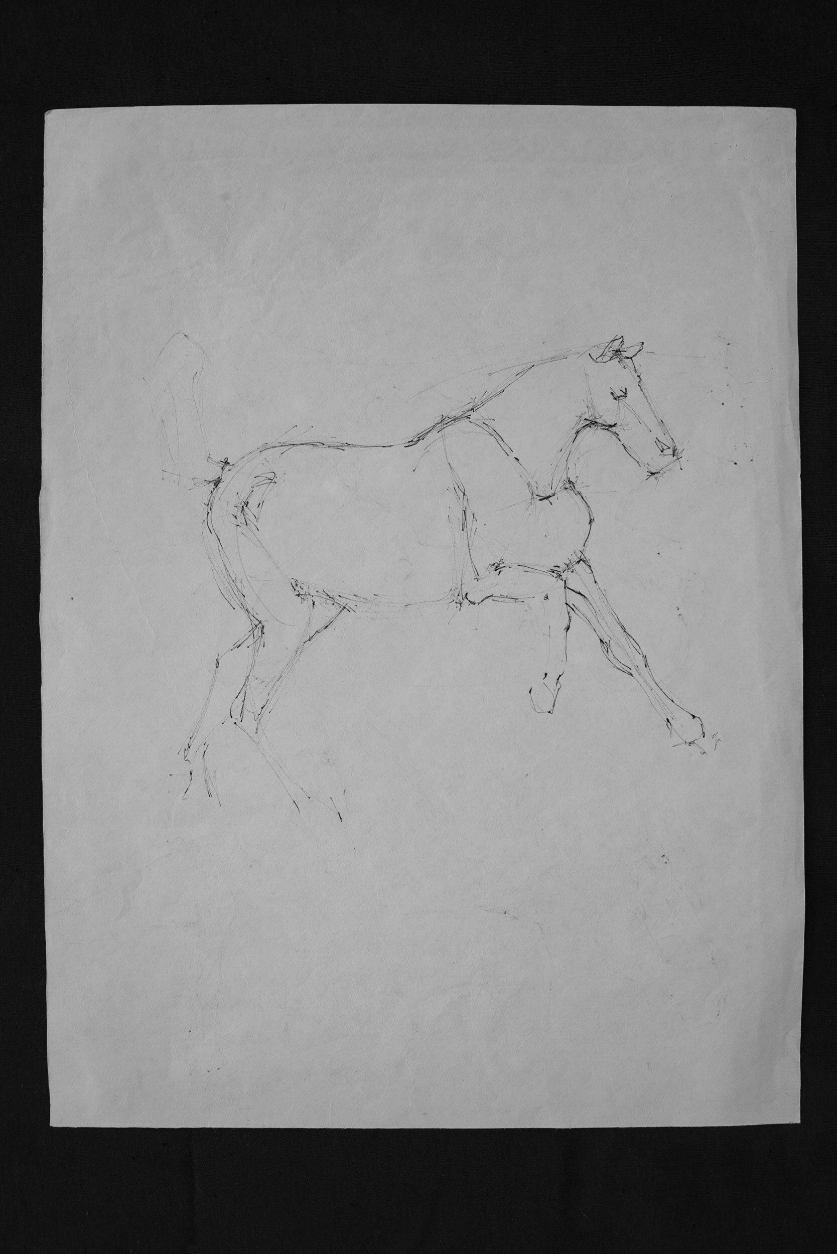 Horse pen schetch 01