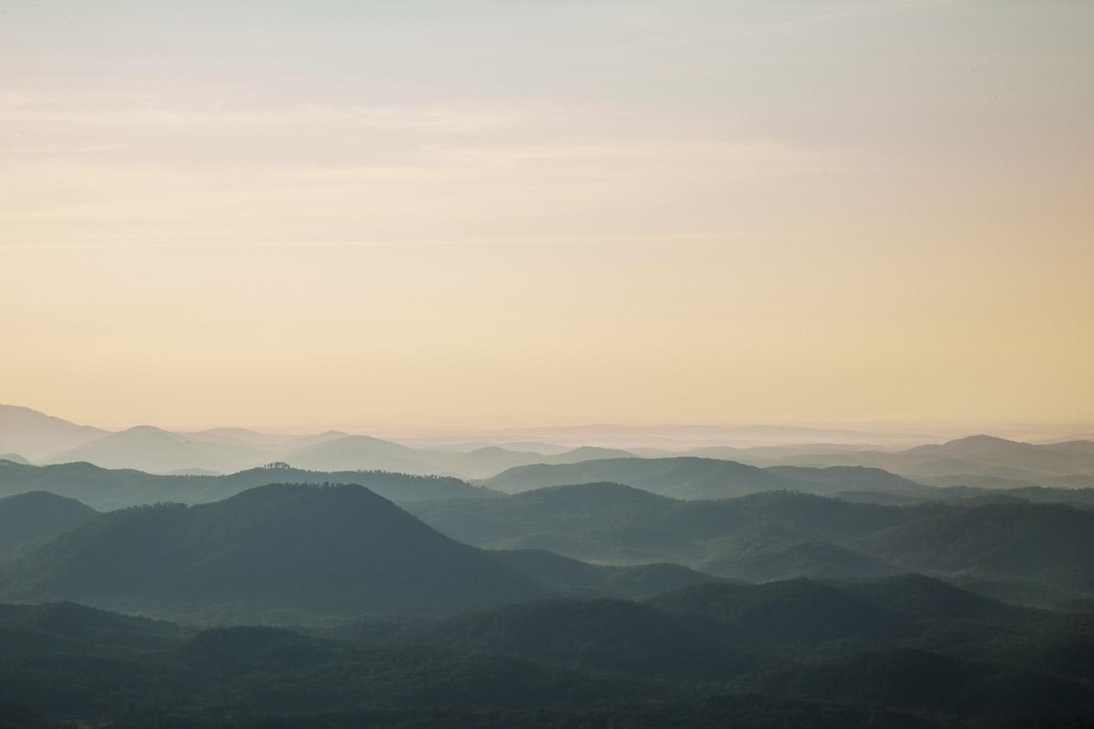 olumbia-southcarolina-silverandchalkimages-realadampowell1.jpg