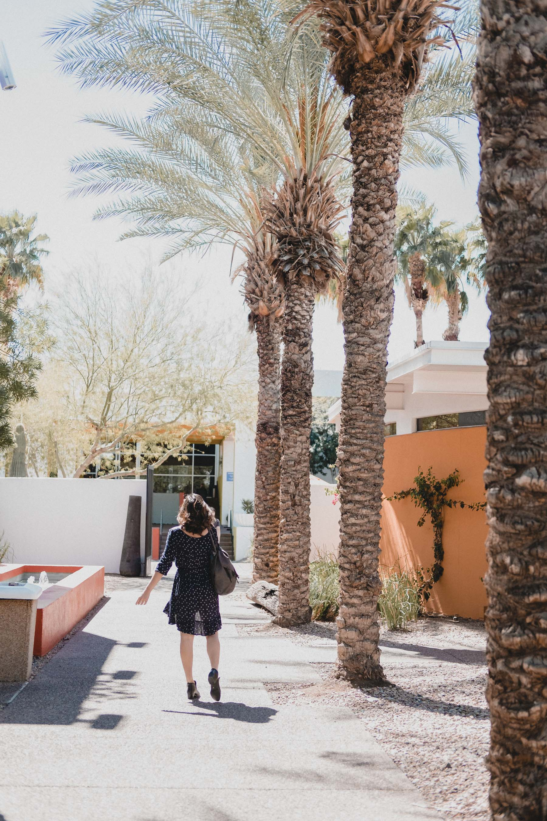 Rachel Off Duty: The Saguaro Hotel