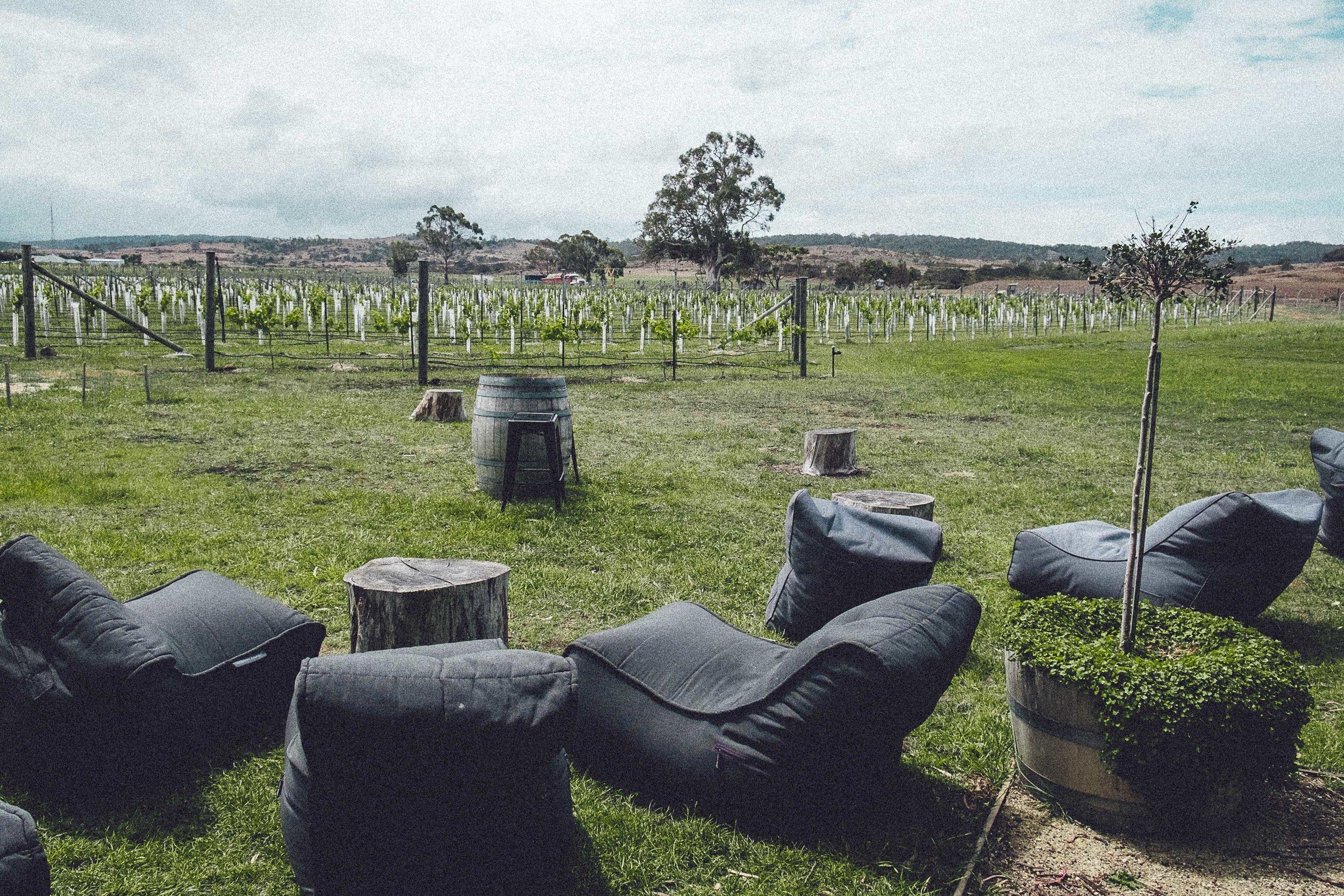 Rachel Off Duty: How to Spend 5 Days in Tasmania - Craigie Knowe