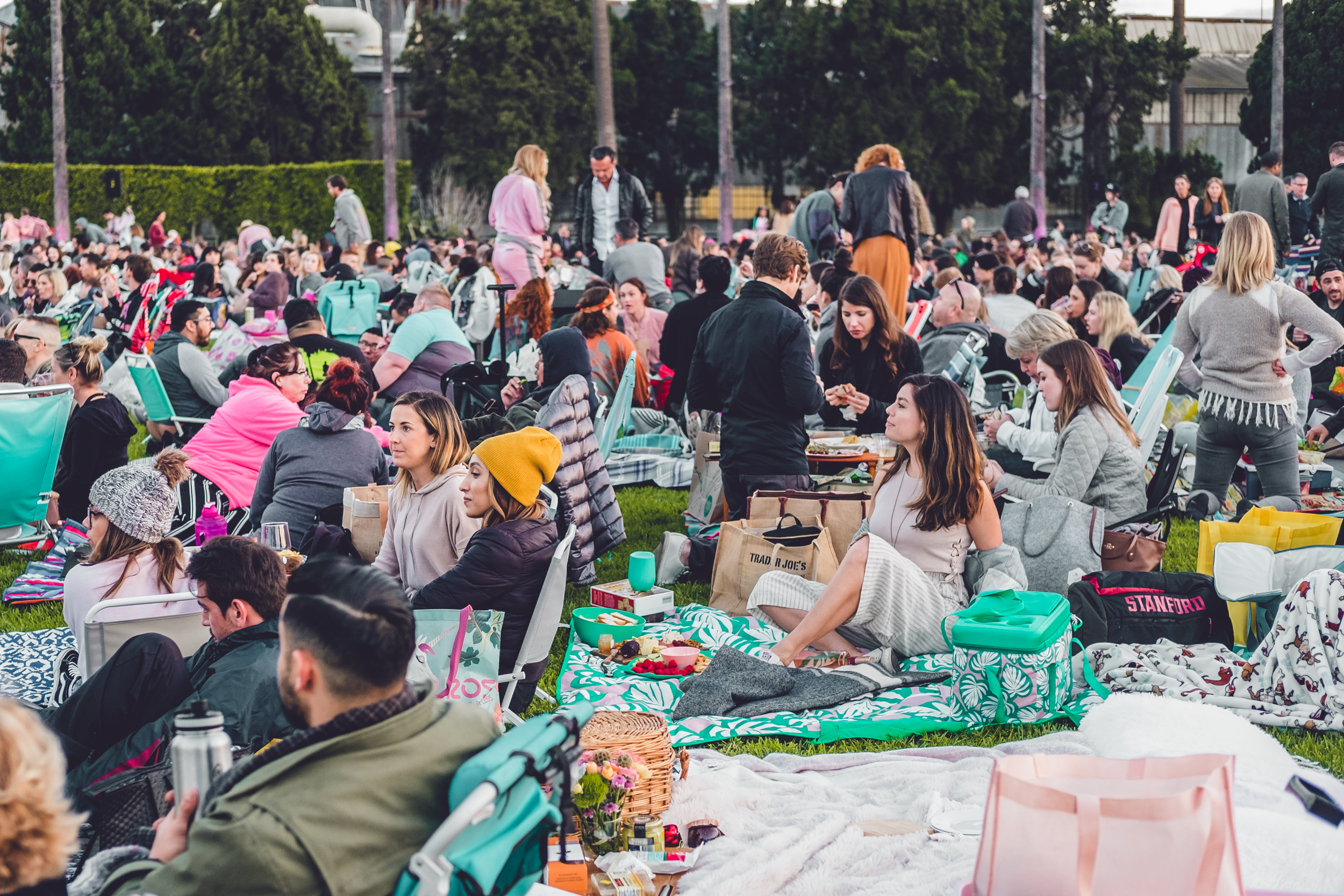 Rachel Off Duty: What to Do in Los Angeles this Summer - Cinespia