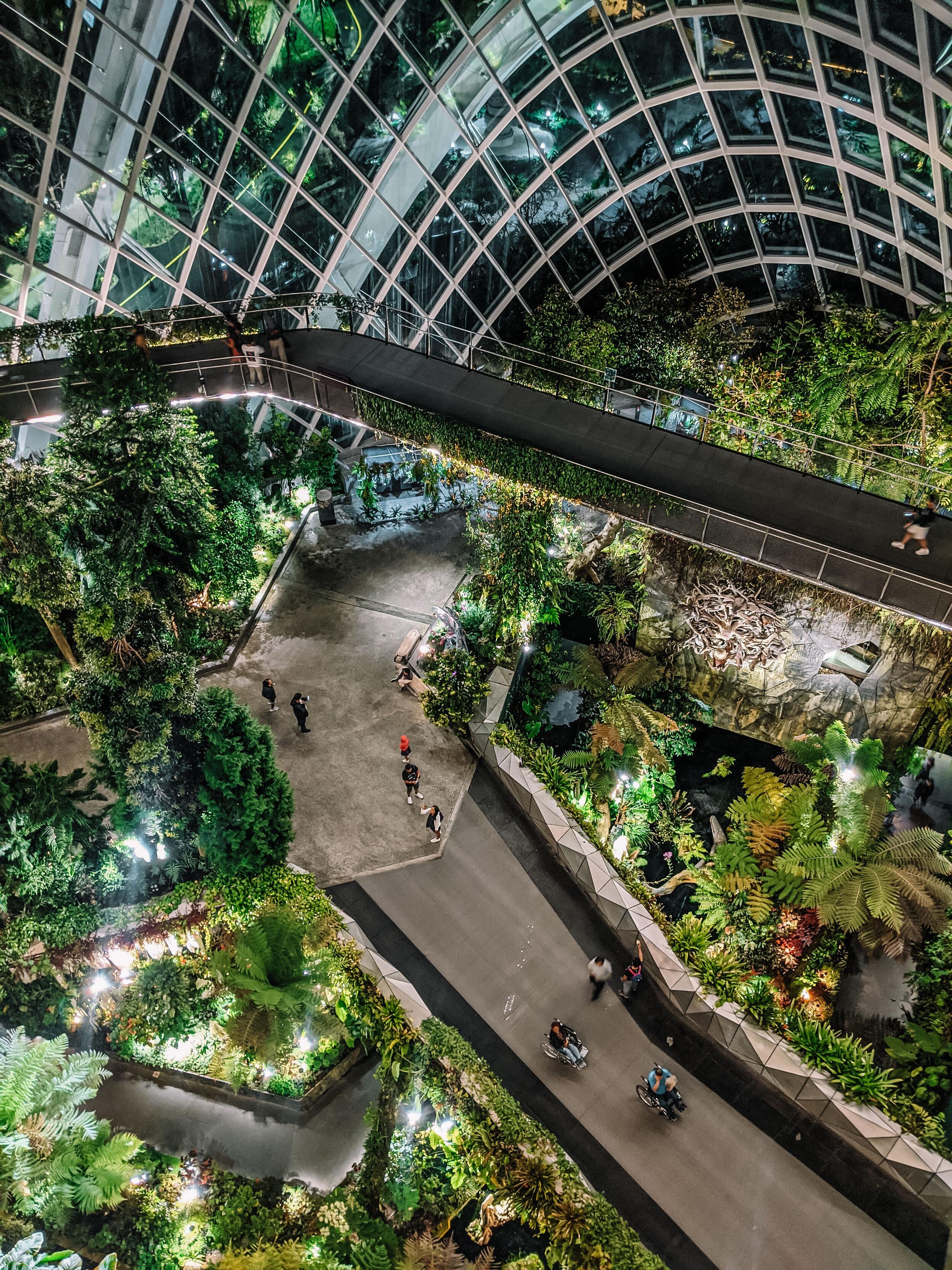 Rachel Off Duty: Cloud Forest in Gardens by the Bay