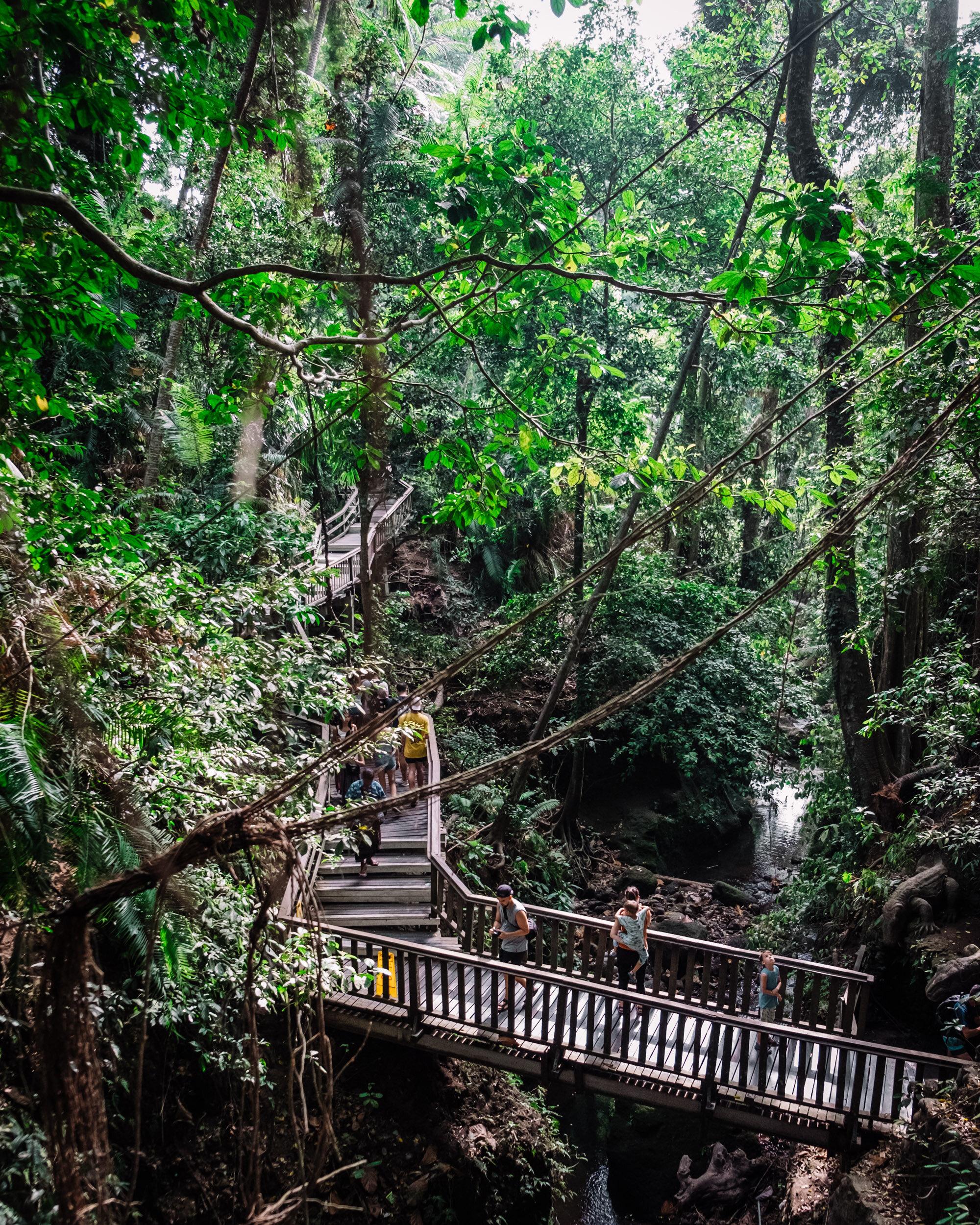 Rachel Off Duty: Ubud Sacred Monkey Forest Sanctuary