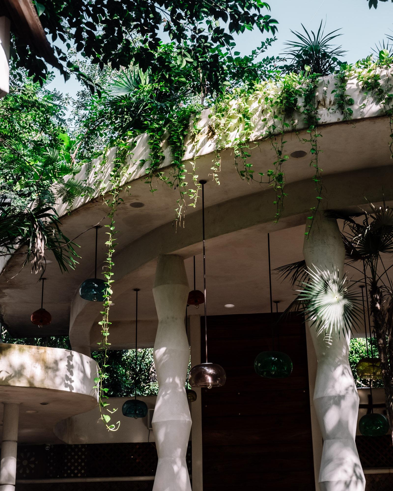 Rachel Off Duty: The Restaurant at Holistika, Tulum, Mexico