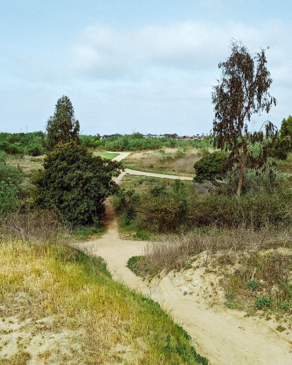 Rachel Off Duty: The Talbert Nature Preserve in Costa Mesa
