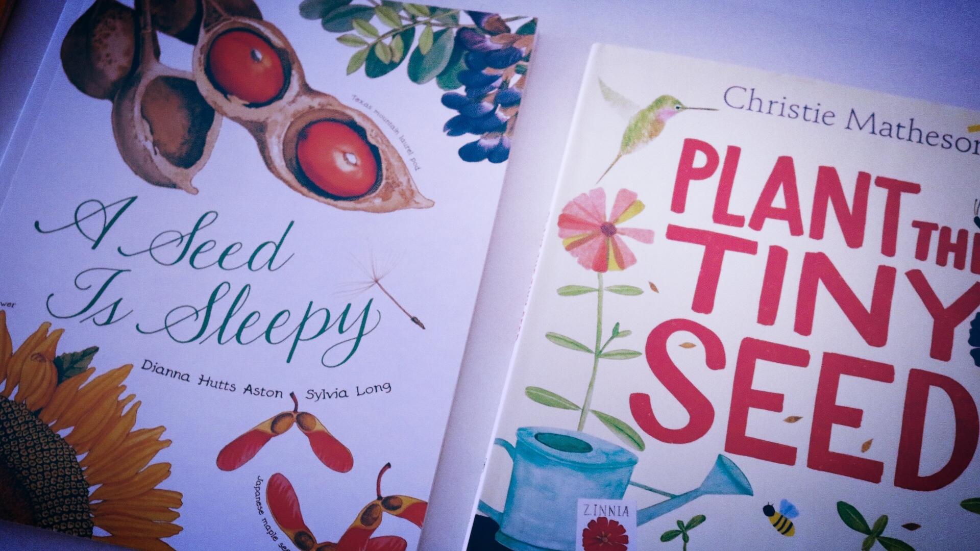 Plant the Tiny Seed.JPG