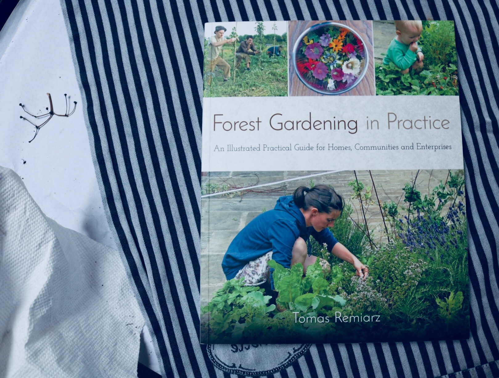 Forest Gardening in Practice, Tomas Remiarz