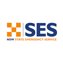 nswses.png