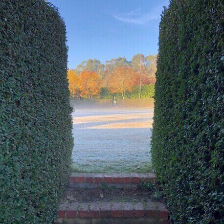 Friday mornings's crisp view, as captured by one of our gardeners. ⛲️ imagine the view if the original water feature in the oval centre was sustainable and still there... #muskfarm #gardenersdream #autumngarden
