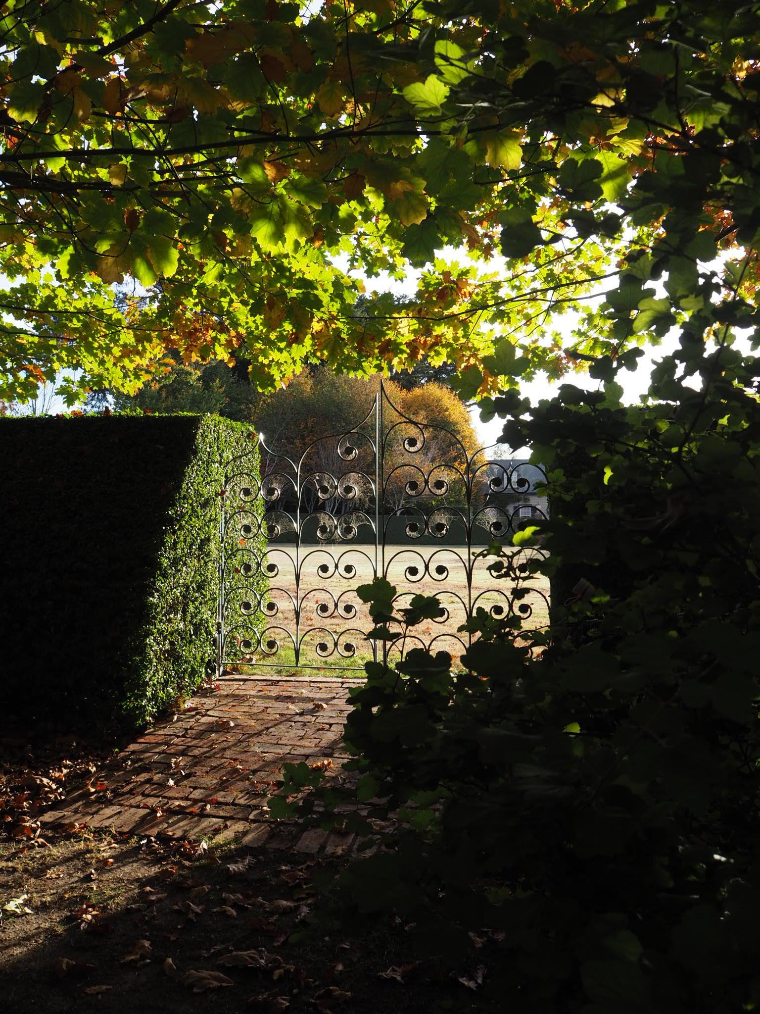 muskfarm_autumn_morning_light_photography_musk_IMG_3395.JPG