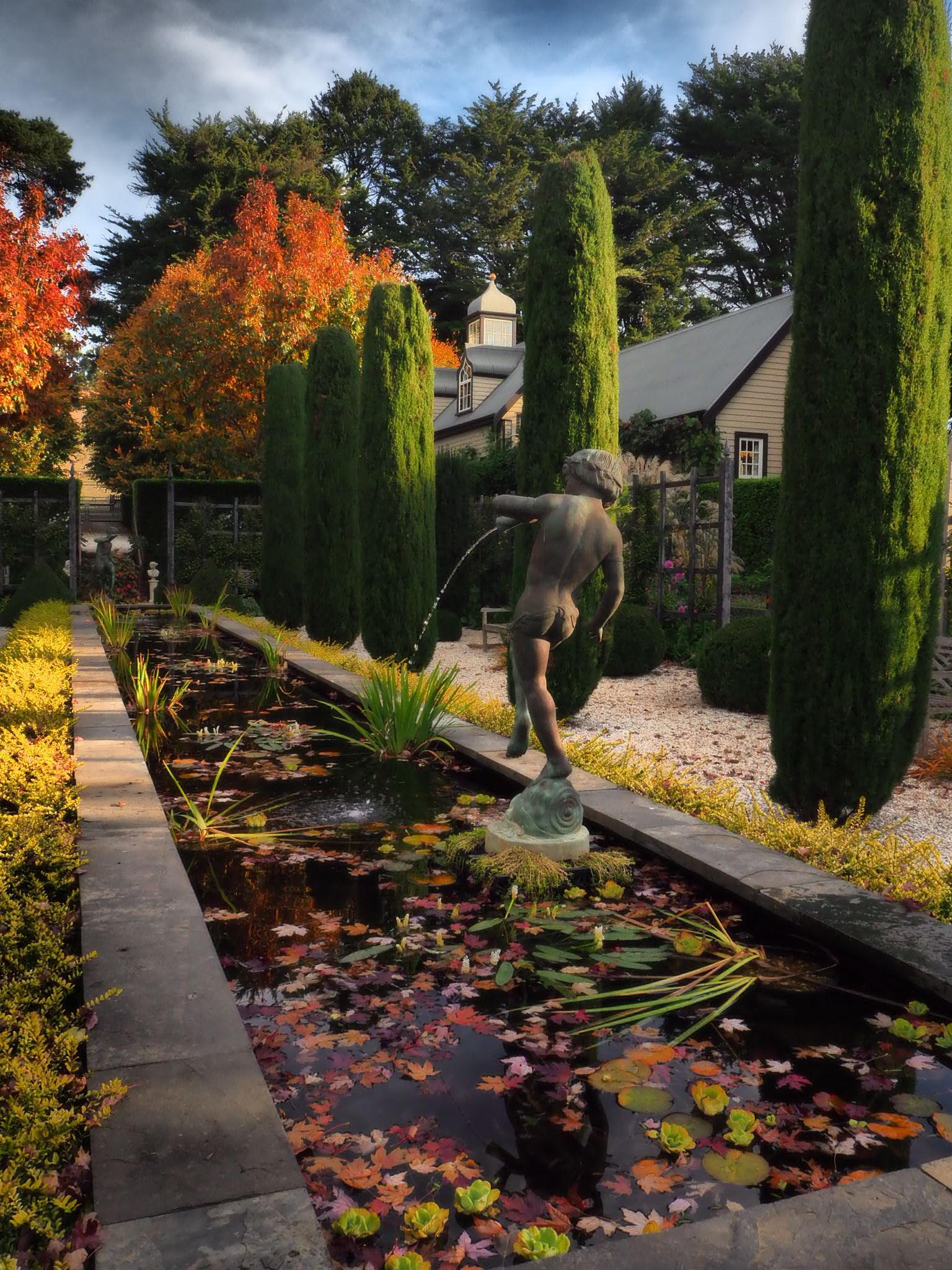 muskfarm_tank_garden_autumn_english_garden_IMG_3392.JPG