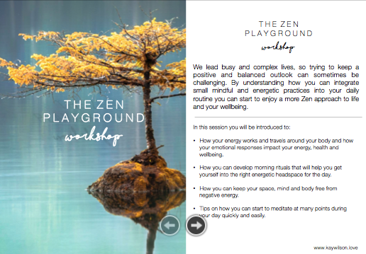The Zen Playground workshop image.png