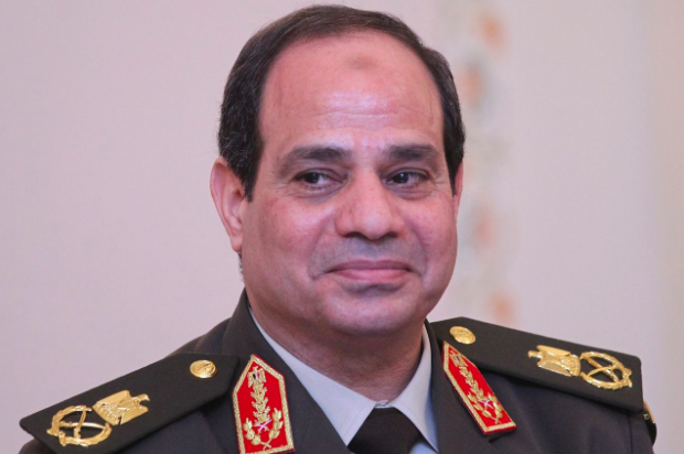 A career military man, Sisi served in Egyptian Army for 37 years – ultimately reaching the rank of General – before usurping Mohammed Morsi in 2013 (Getty Images)