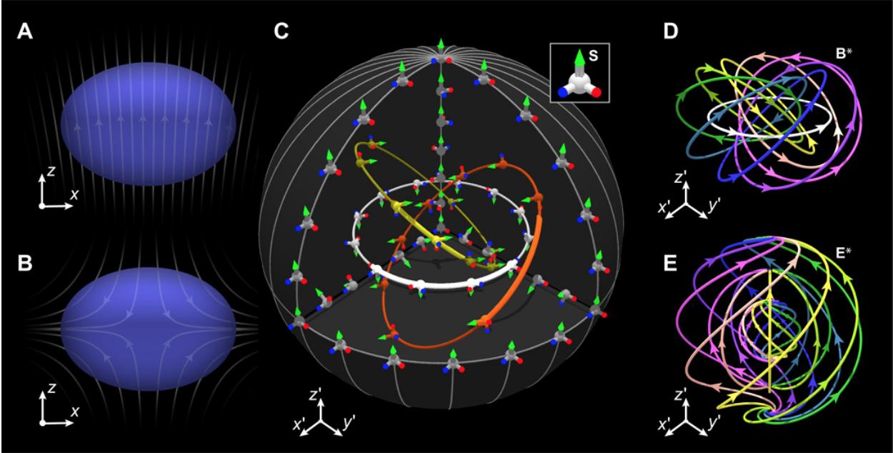The field lines of a Shankar 3D skyrmion (Source:  Science )