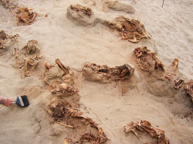 Preserved in dry sand for more than 500 years, more than a dozen children were revealed over the course of a day by archaeologists (National Geographic)