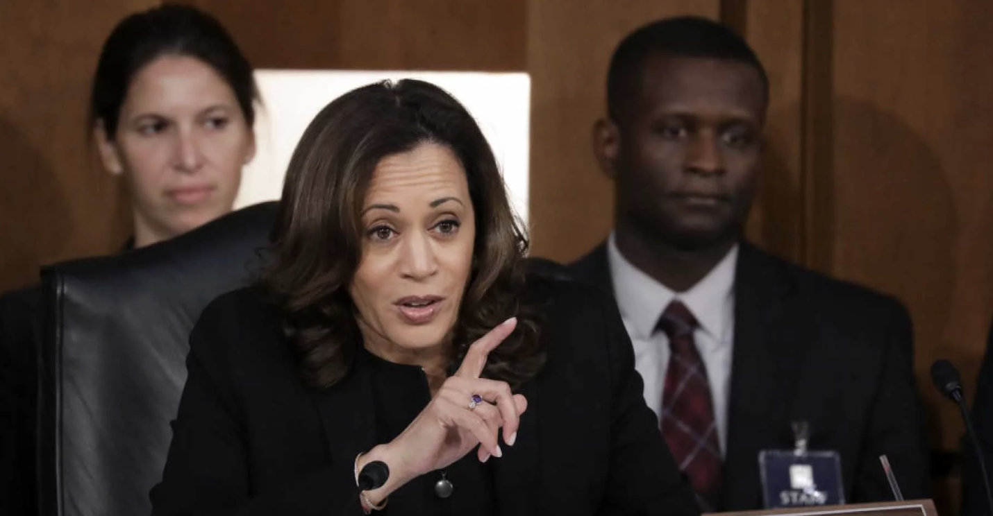 [Photo: Kamala Harris. Source:  The Daily Wire ]