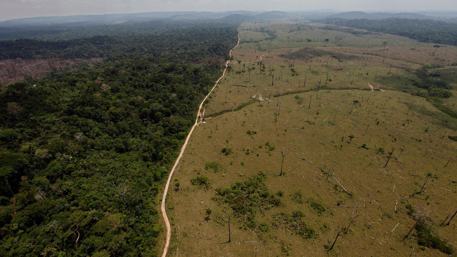 A deforested area near Novo Progresso in Brazil's northern state of Para. Photo: Andre Penner/ AP
