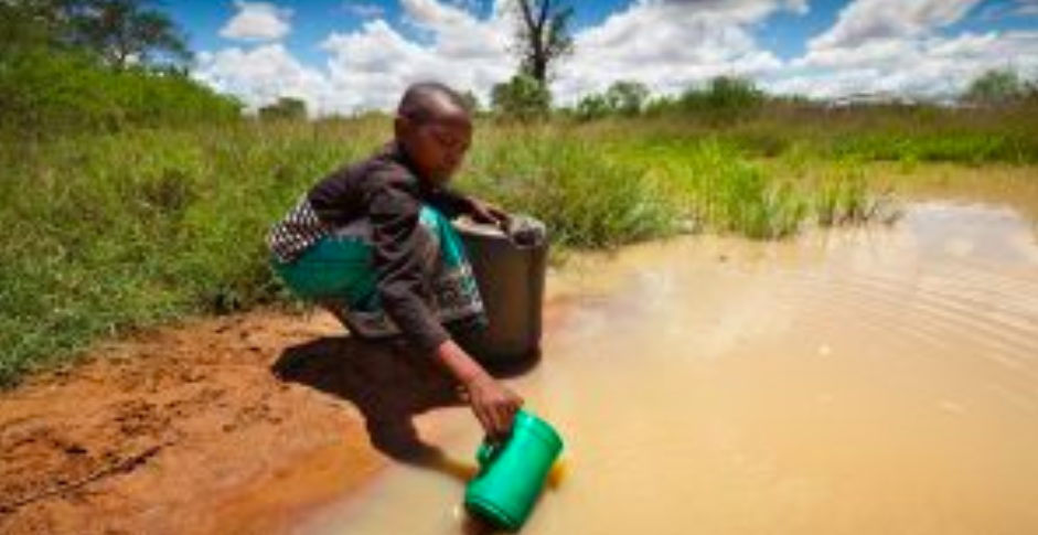 """The village of Orunyamo has as its water source a """"muddy puddle created from rain runoff and shared with local herds of cattle and goats."""" Photo:  Lifewater ."""