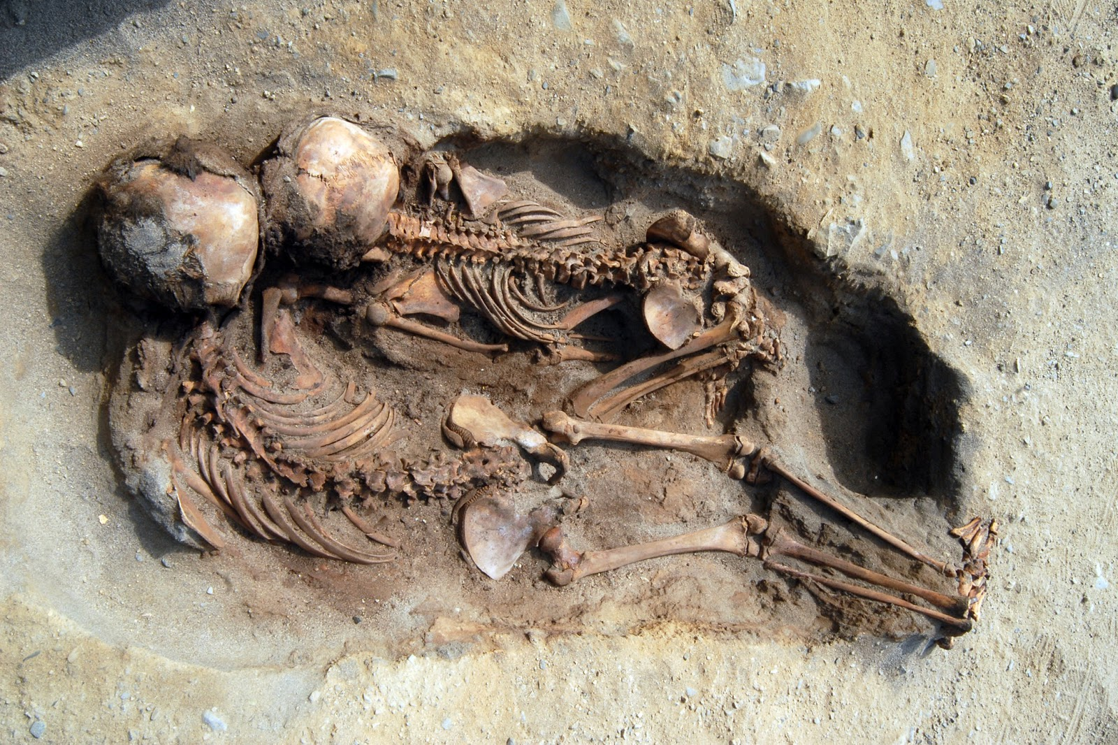 Children skeletons found in Peru. Photo:  John Verano/The New York Times