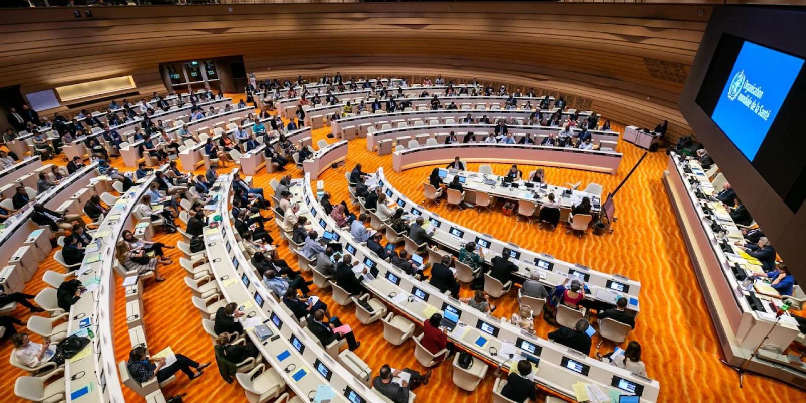 Aerial view of committee discussions on the final day of the 71st World Health Assembly, held in Geneva, Switzerland from May 21 to May 26, 2018. Photo:  WHO/A. Tardy