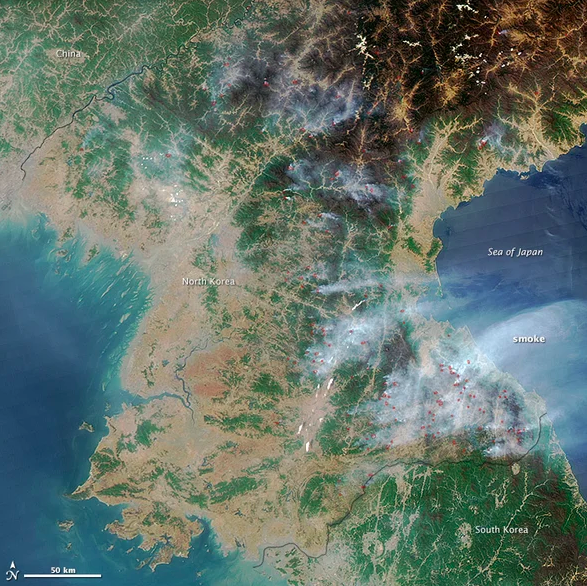 The contrast between forest growth in North Korea and South Korea has only grown more pronounced with time. Jeff Schmaltz /  NASA .