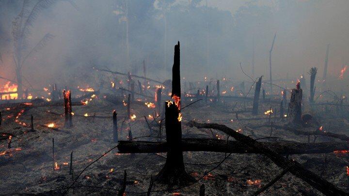 Photo:  Ricardo Moraes / Reuters