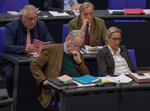 AfD leadership members in the Bundestag. Photo:  Olaf Kosinsky