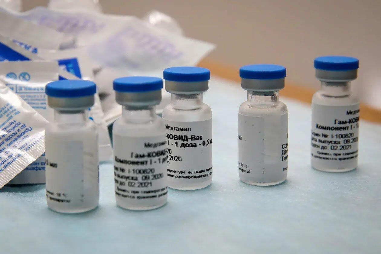 Russian President Vladimir Putin Approves Second Covid 19 Vaccine Ir Insider