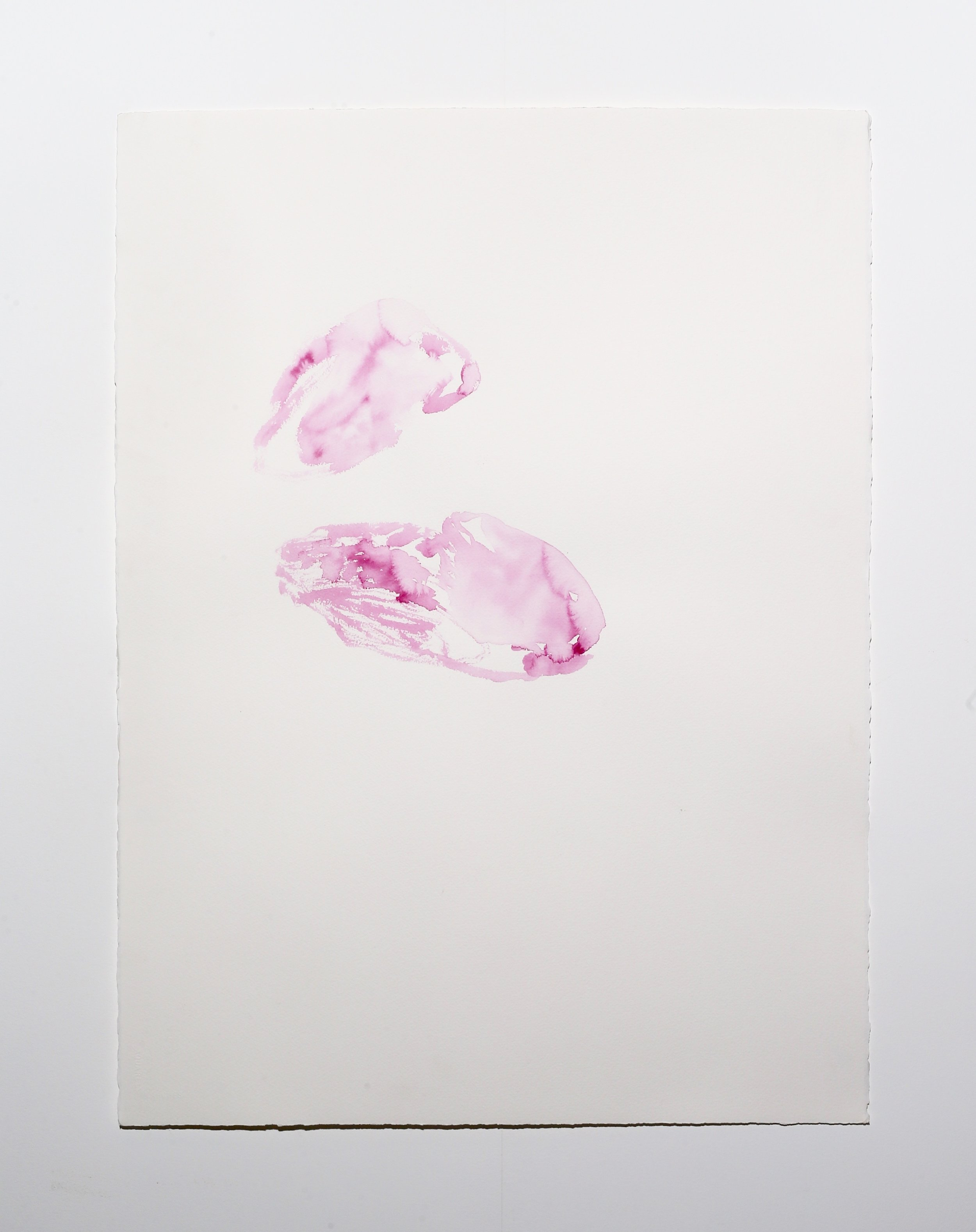 Pink II , 2018, ink on paper, 76 x 56 cm