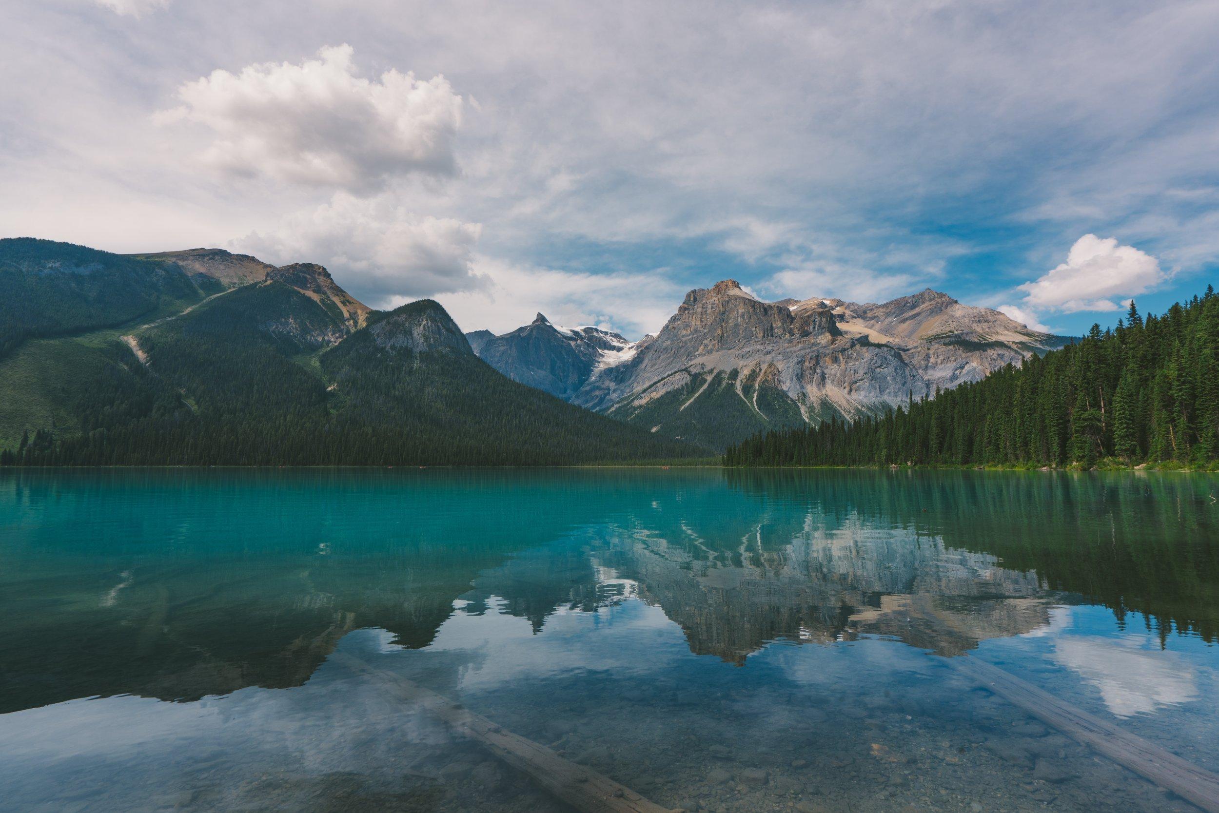 Reflex en reflectie betekenen beide op hun eigen manier 'weerkaatsing'. De afbeeldingen in dit artikel geven allemaal verschillende soorten weerkaatsing weer. Bovenstaande foto is van  Linford Miles .