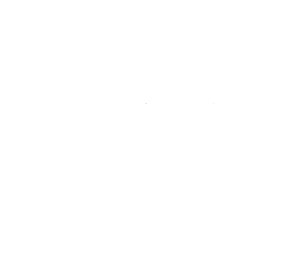 affordable.png