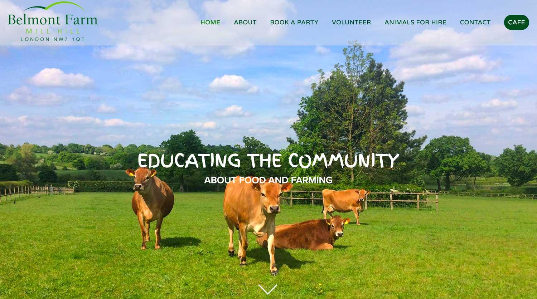 BELMONT FARM - Web Design
