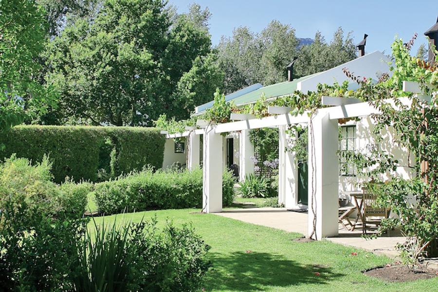 la-bourgogne-farm-extra-virgin-olive-oil-03.jpg