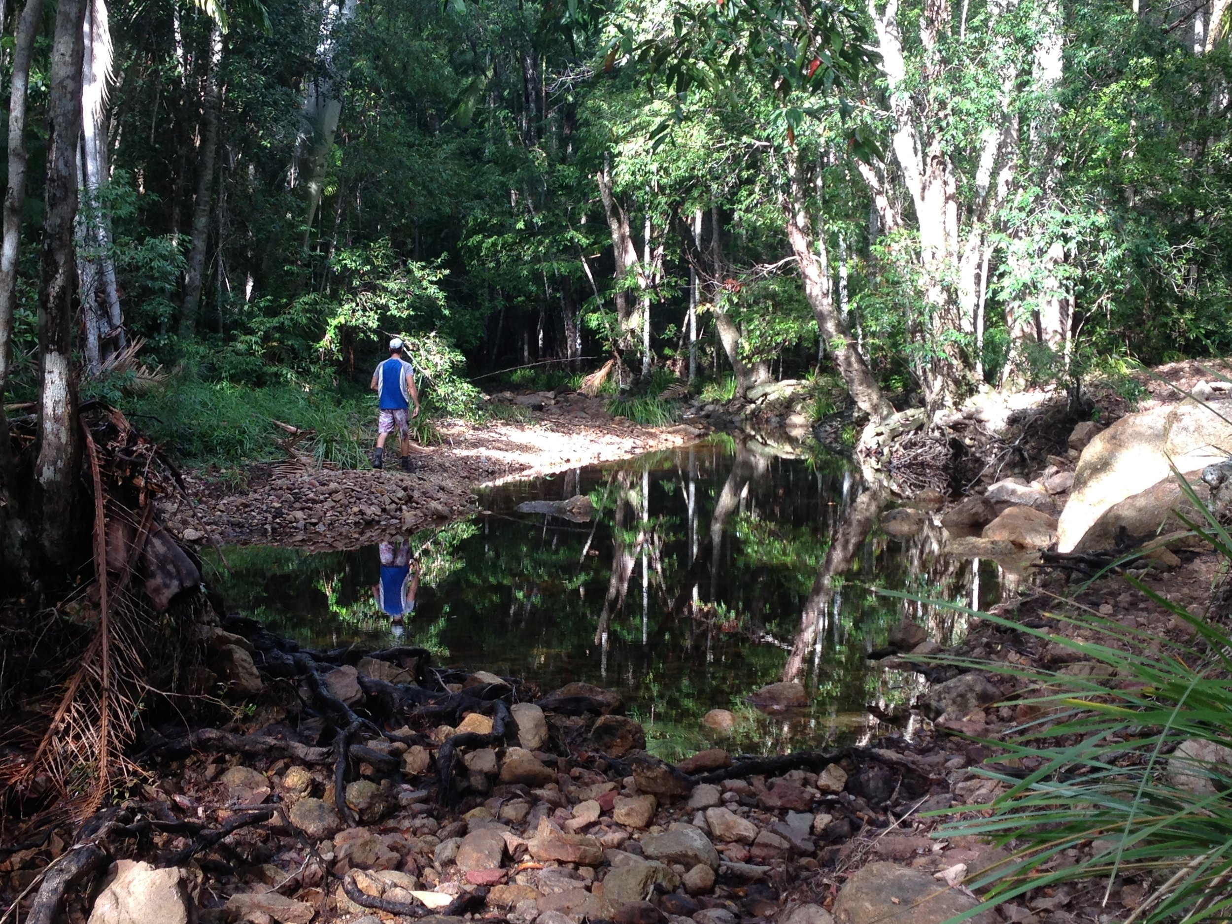 Gheerulla Creek 3.jpg