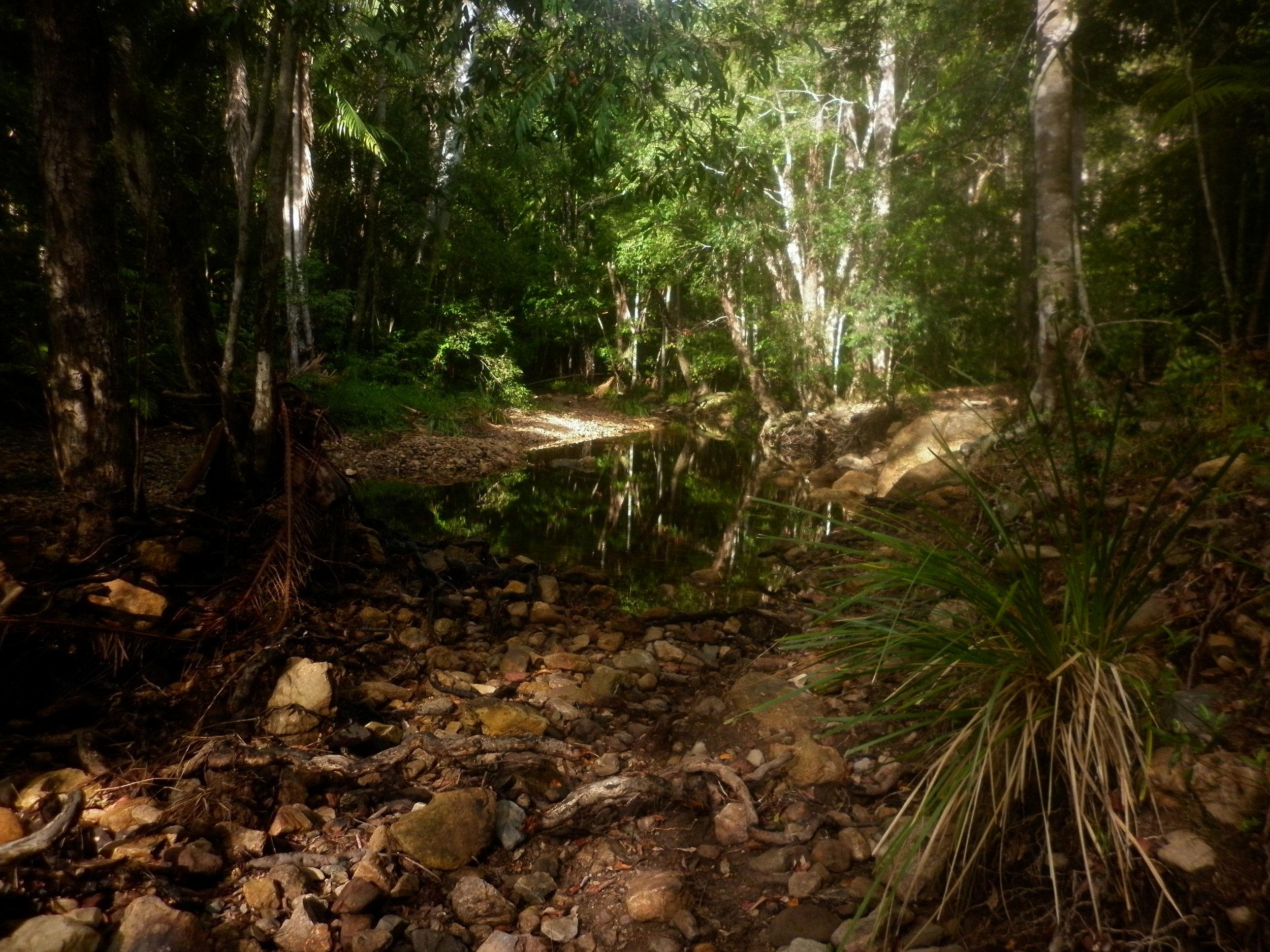 Gheerulla Creek.JPG