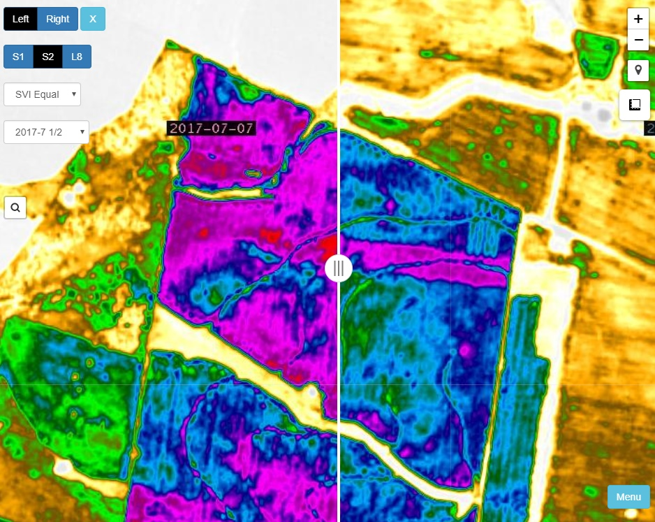 Comparing SVI Equal with 7 July on left and 7 September on right. Sentinel 2 imagery.