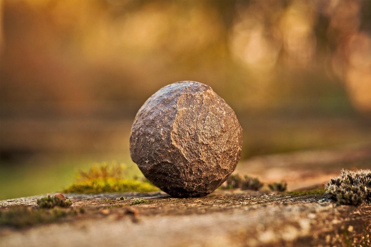 elemento terra shiatsu meridiani bra cuneo torino trattamenti shiatsu annalisa bachmann .jpg