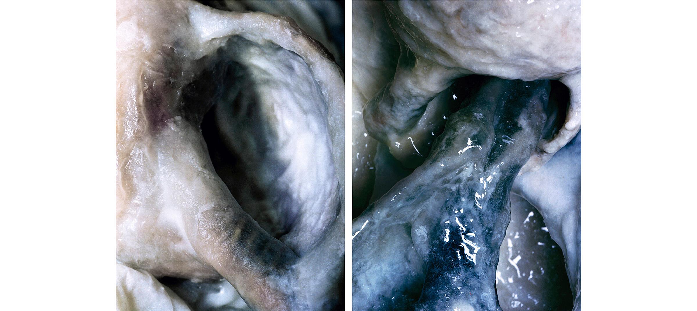 White Fluids  Diptich N°4, 2006/2015  T irages gélatino argentiques, 2 panneaux 144 x 104 cm chacun   Gelatin silver prints, 2 panels 56,69 x 40,94 inches each  1/4