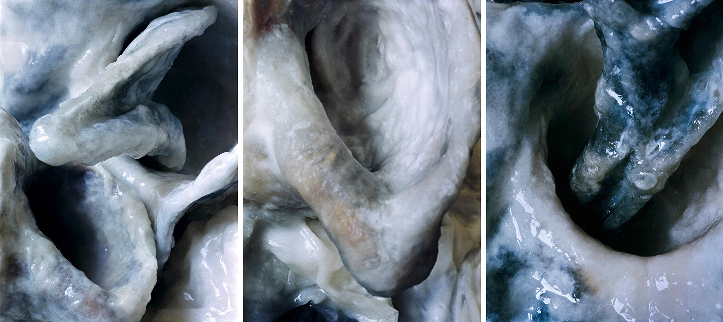 White Fluids  Triptich N°2, 2006/2015  T irages gélatino argentiques, 3 panneaux 144 x 104 cm chacun   Gelatin silver prints, 3 panels 56,69 x 40,94 inches each  2/4