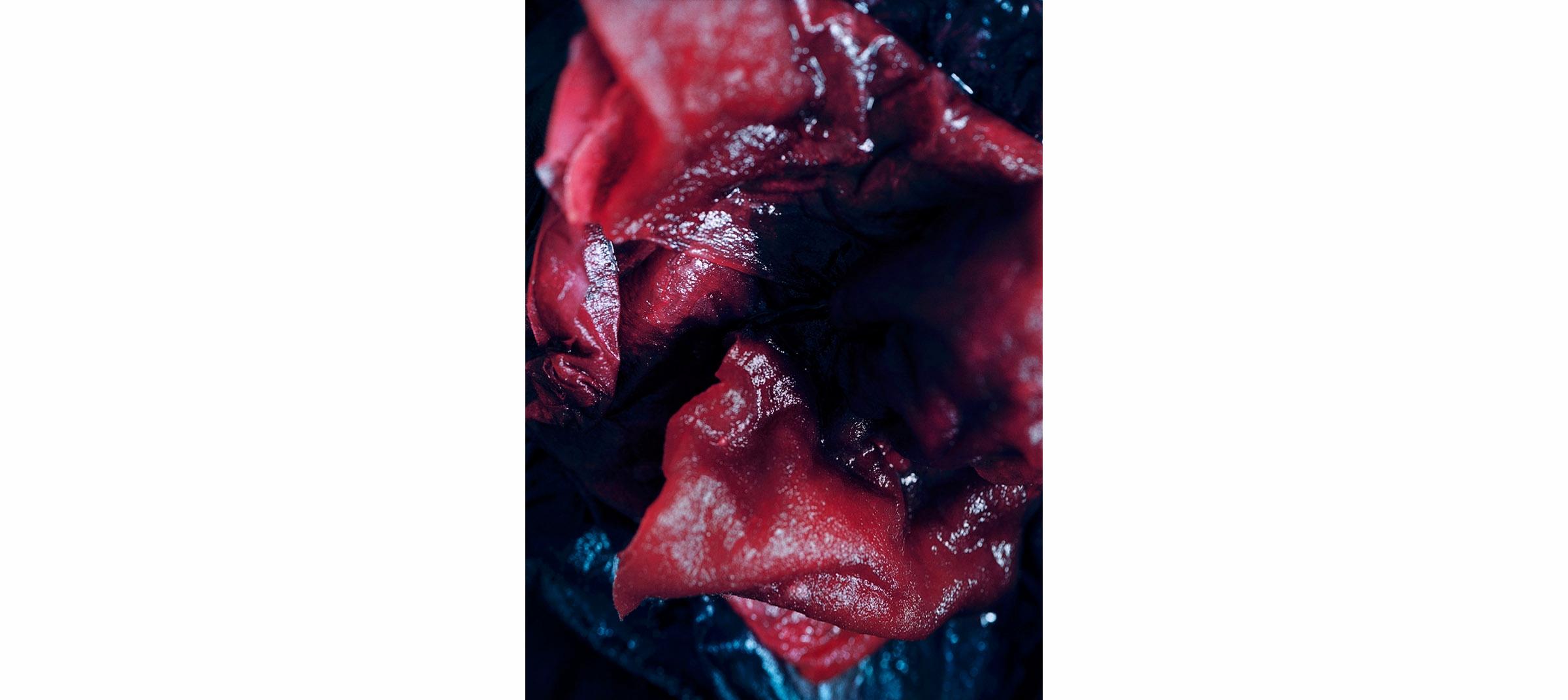 Red Fluids  Untitled N°8, 2005/2008 Tirage gélatino argentique 144 x 104 cm | Gelatin silver print 56,69 x 40,94 inches  1/5