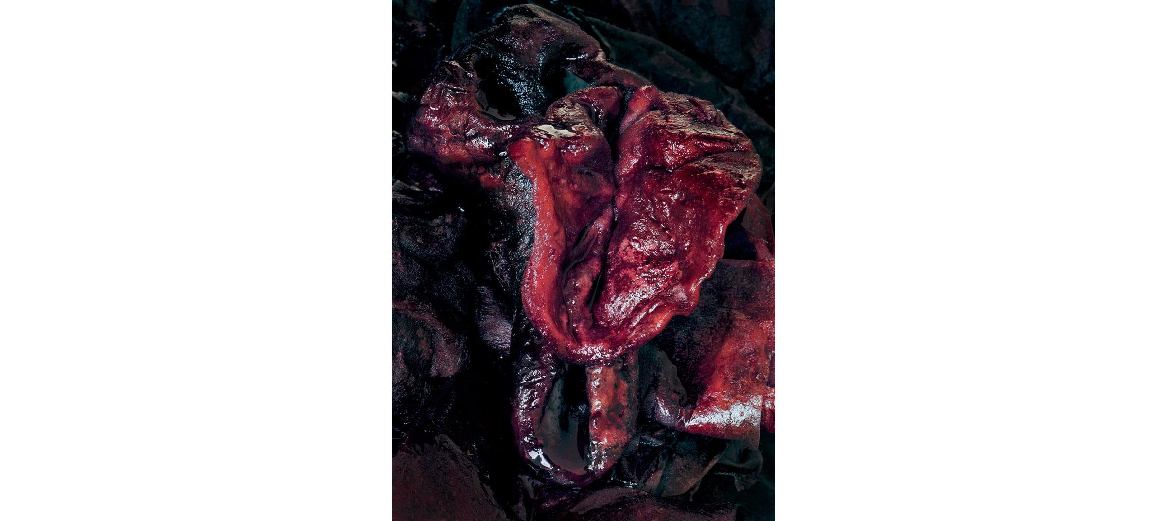 Red Fluids  Untitled N°5, 2005/2008 Tirage gélatino argentique 144 x 104 cm | Gelatin silver print 56,69 x 40,94 inches  2/5